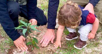IMA realiza plantio de mudas no Parque da Serra do Tabuleiro